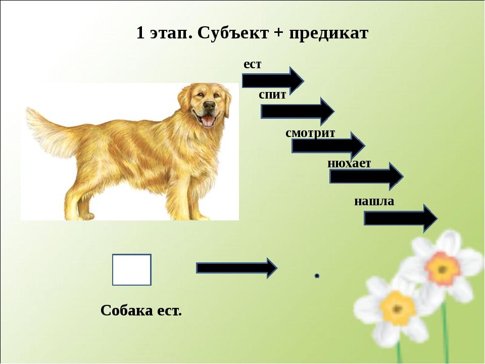 Собака ест. 1 этап. Субъект + предикат ест спит смотрит нюхает нашла