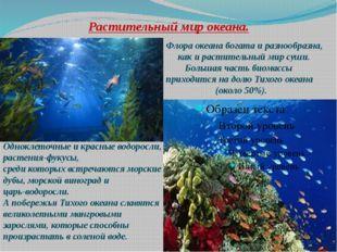 Растительный мир океана. Флора океана богата и разнообразна, как и растительн