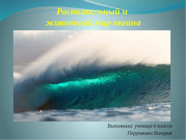 Растительный и животный мир океана Выполнила: ученица 6 класса Перушкина Вале...