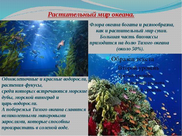 Растительный мир океана. Флора океана богата и разнообразна, как и растительн...