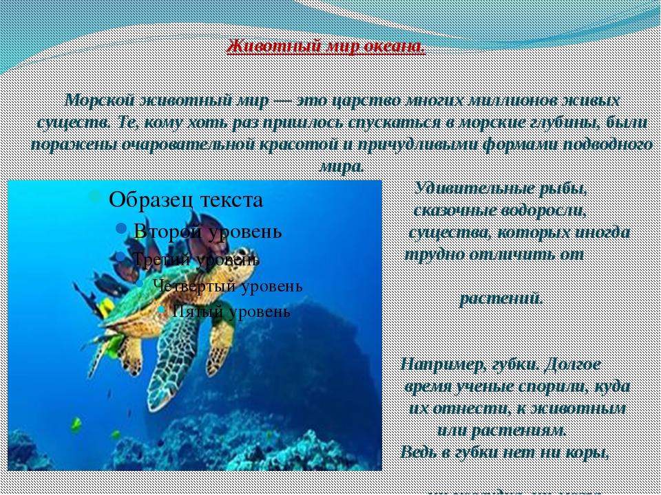Животный мир океана. Морской животный мир — это царство многих миллионов живы...