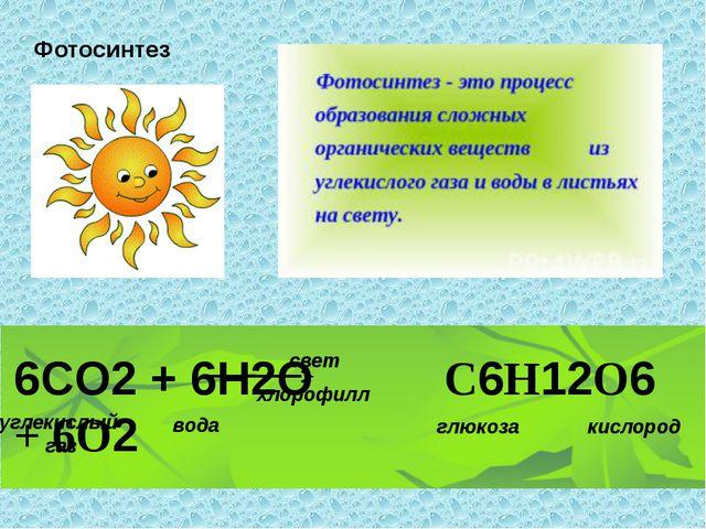 Фотосинтез 6CO2 + 6H2O C6H12O6 + 6O2 свет хлорофилл углекислый газ вода глюк...