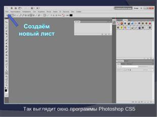 Так выглядит окно программы Photoshop CS5