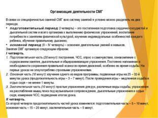 Организация деятельности СМГ В связи со специфичностью занятий СМГ всю систем