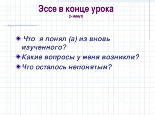 Эссе в конце урока (5 минут) Что я понял (а) из вновь изученного? Какие вопро