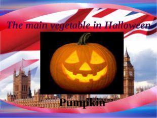 The main vegetable in Halloween Pumpkin