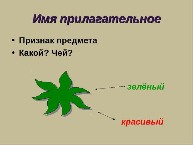 Имя прилагательное Признак предмета Какой? Чей? зелёный красивый