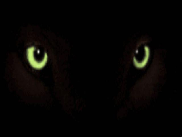 Рассказы Черного Волка Урок по изучению творчества Э. Сетона-Томпсона
