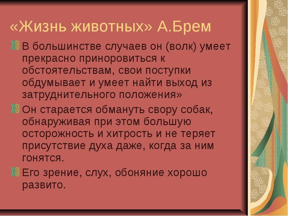 «Жизнь животных» А.Брем В большинстве случаев он (волк) умеет прекрасно прино...