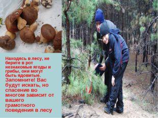 Находясь в лесу, не берите в рот незнакомые ягоды и грибы, они могут быть ядо