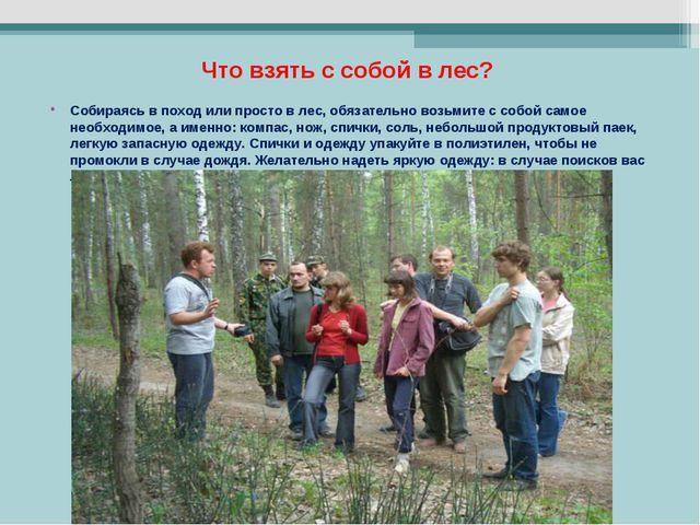 Что взять с собой в лес? Собираясь в поход или просто в лес, обязательно возь...