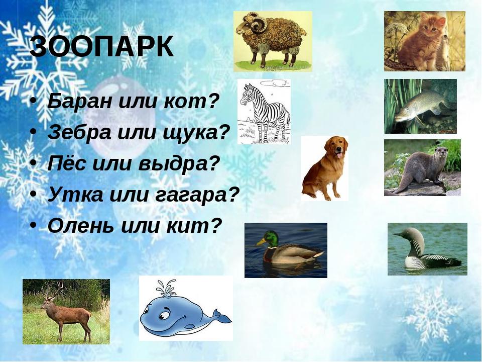 ЗООПАРК Баран или кот? Зебра или щука? Пёс или выдра? Утка или гагара? Олень...