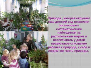 Природа , которая окружает наш детский сад позволяет организовать систематиче