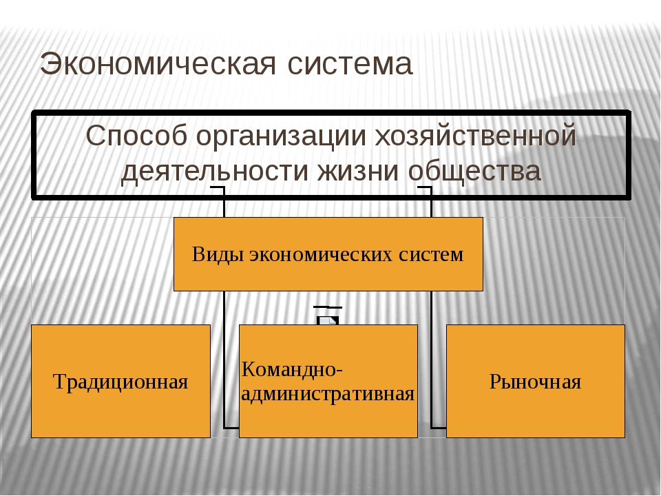 Экономическая система Способ организации хозяйственной деятельности жизни об...