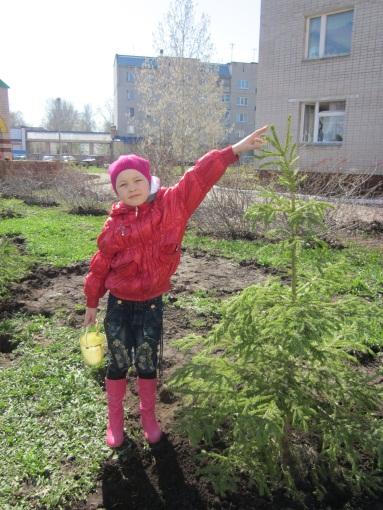 C:\Users\Садик\Documents\фото\Посади дерево\IMG_0966.jpg