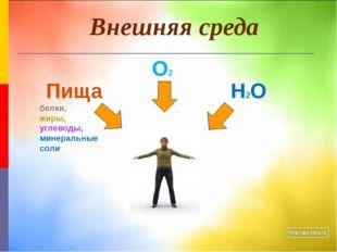 Внешняя среда Н2О О2 Пища белки, жиры, углеводы, минеральные соли