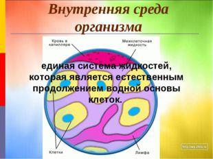 Внутренняя среда организма единая система жидкостей, которая является естеств
