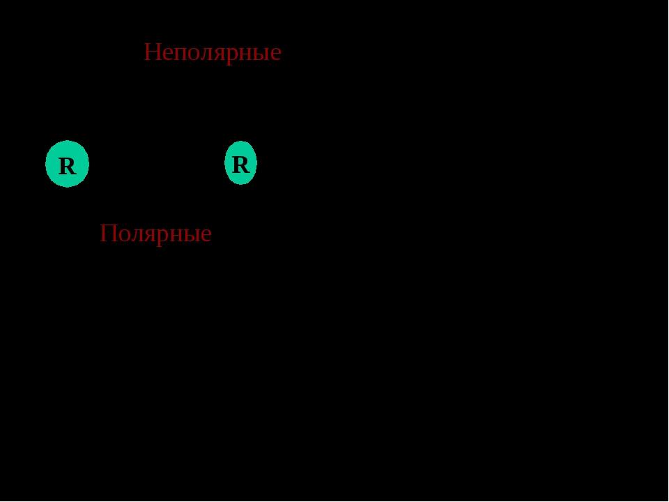Неполярные концы молекулы мыла погружаются в капли масла. Na+ Na+ -COO- -COO...