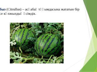 Қарбыз (Cіtrullus) – асқабақ тұқымдасына жататын бір немесе көпжылдық өсімдік.