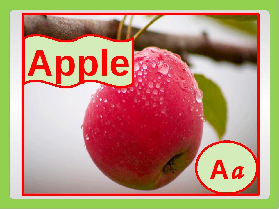 Aa Apple Aa
