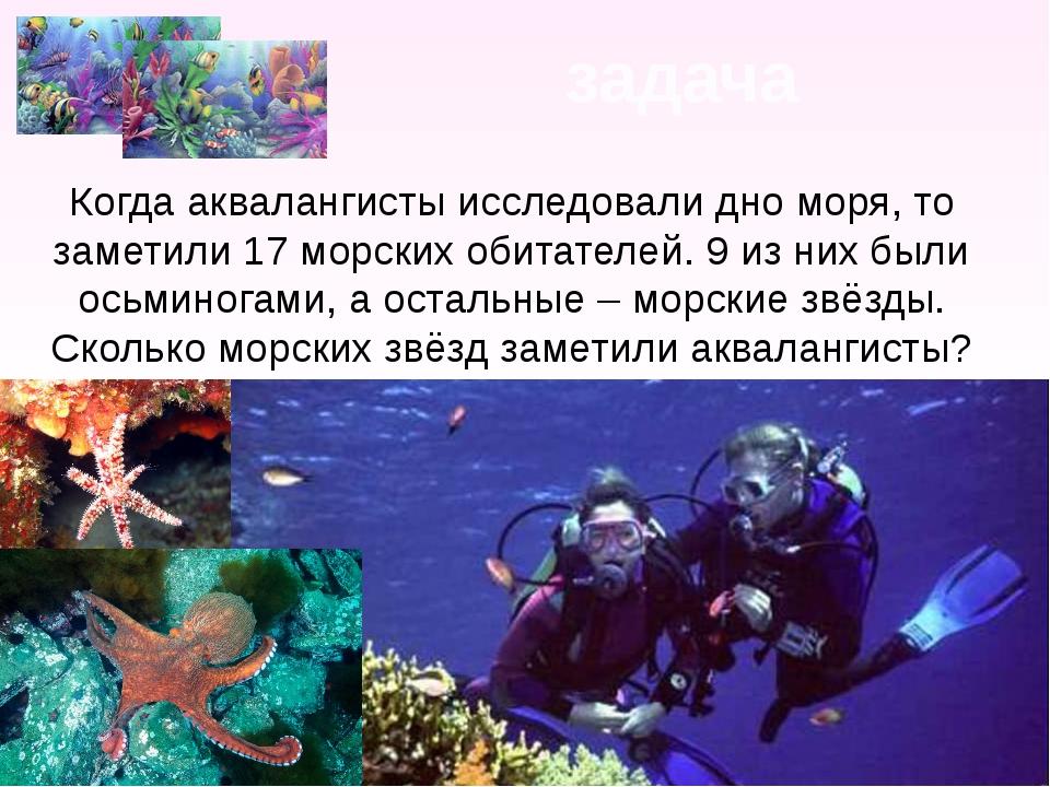 задача Когда аквалангисты исследовали дно моря, то заметили 17 морских обитат...