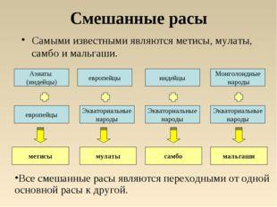 Смешанные расы Самыми известными являются метисы, мулаты, самбо и мальгаши. е