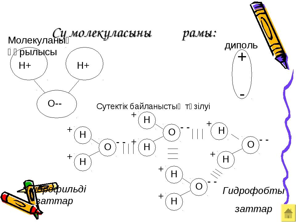 Су молекуласының құрамы: Гидрофильді заттар Гидрофобты заттар