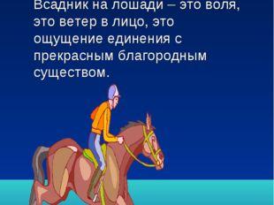 Бог создал коня на радость человеку –сейчас это очевиднее, чем когда-либо. В