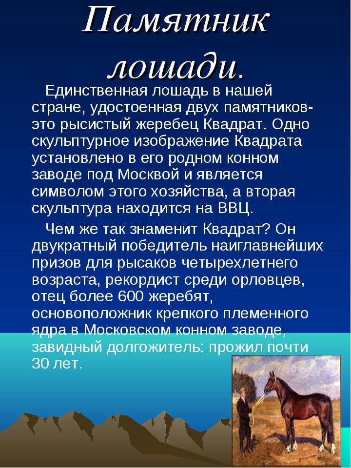 Памятник лошади. Единственная лошадь в нашей стране, удостоенная двух памятни...