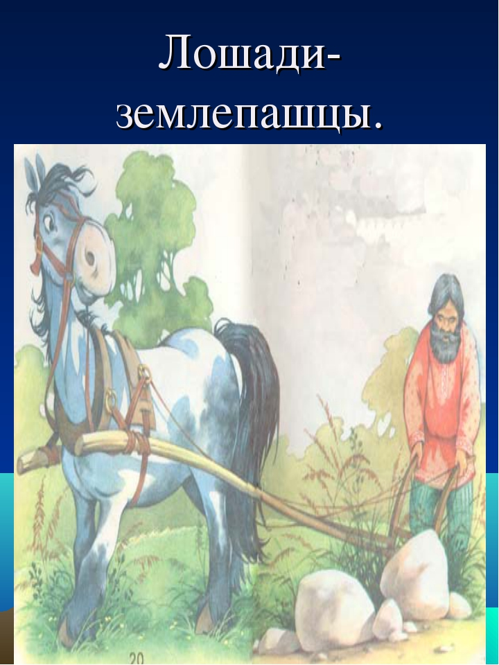 Лошади- землепашцы.