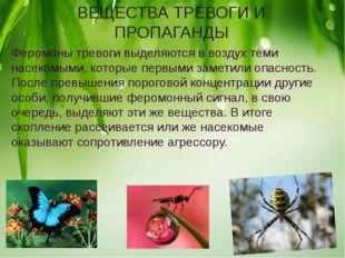 ВЕЩЕСТВА ТРЕВОГИ И ПРОПАГАНДЫ Феромоны тревоги выделяются в воздух теми насек