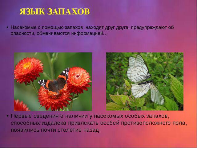Насекомые с помощью запахов находят друг друга, предупреждают об опасности, о...