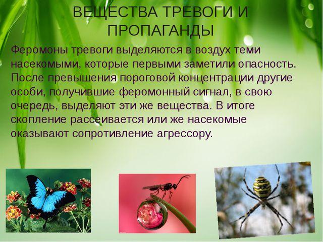 ВЕЩЕСТВА ТРЕВОГИ И ПРОПАГАНДЫ Феромоны тревоги выделяются в воздух теми насек...