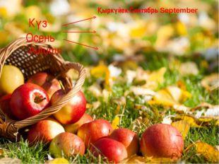 Күз Осень Autumn Қыркүйек Сентябрь September