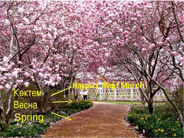 Көктем Весна Spring Наурыз Март March