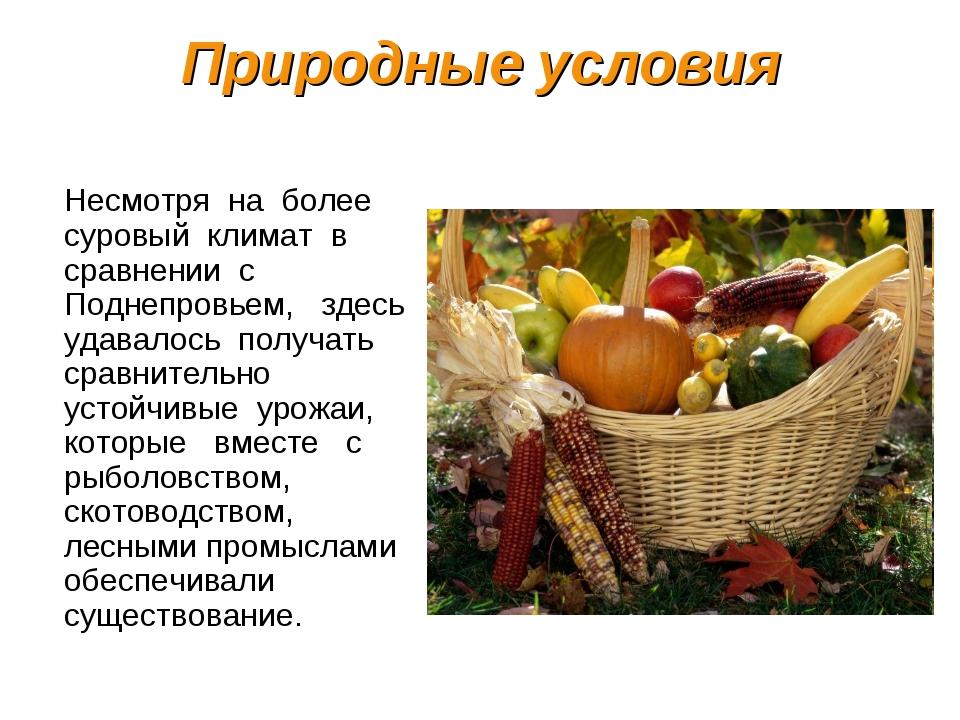 Природные условия Несмотря на более суровый климат в сравнении с Поднепровьем...