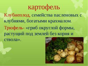 картофель Клубнеплод, семейства пасленовых с клубнями, богатыми крахмалом. Тр