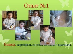 Опыт №1 Вывод: картофель состоит из воды и крахмала.