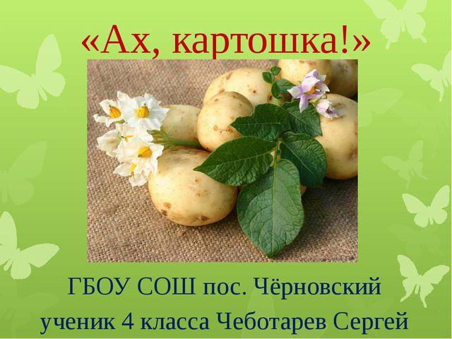 «Ах, картошка!» ГБОУ СОШ пос. Чёрновский ученик 4 класса Чеботарев Сергей