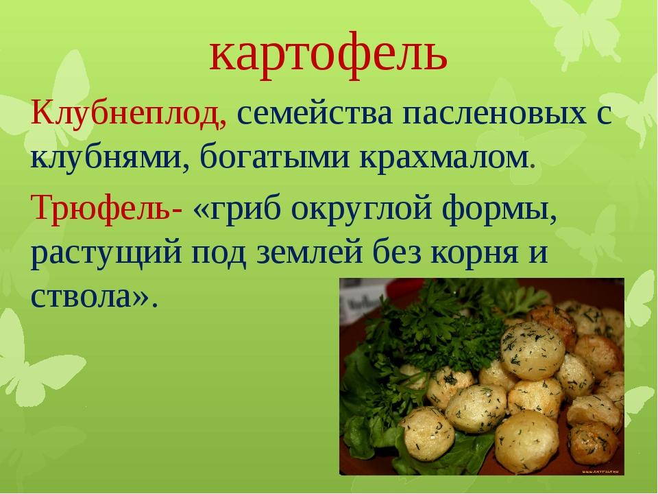 картофель Клубнеплод, семейства пасленовых с клубнями, богатыми крахмалом. Тр...
