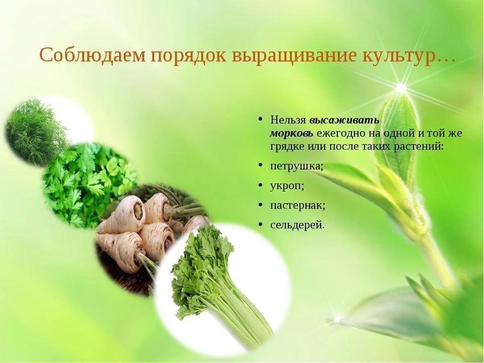 Соблюдаем порядок выращивание культур… Нельзявысаживать морковьежегодно на...