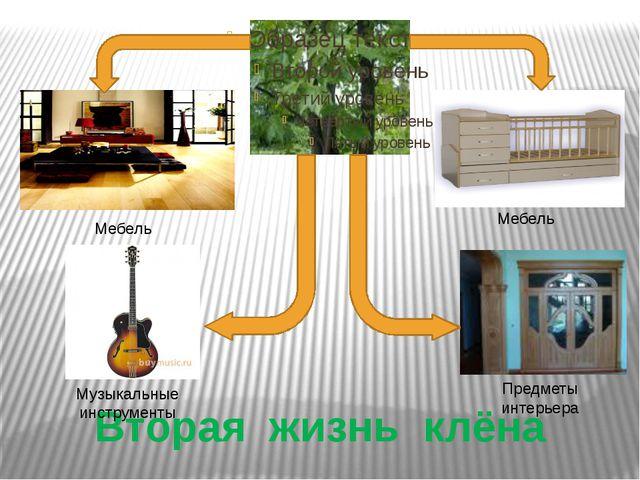 Вторая жизнь клёна Мебель Предметы интерьера Музыкальные инструменты Мебель