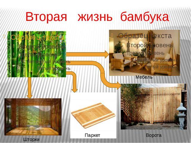 Вторая жизнь бамбука Ворота Мебель Паркет Шторки