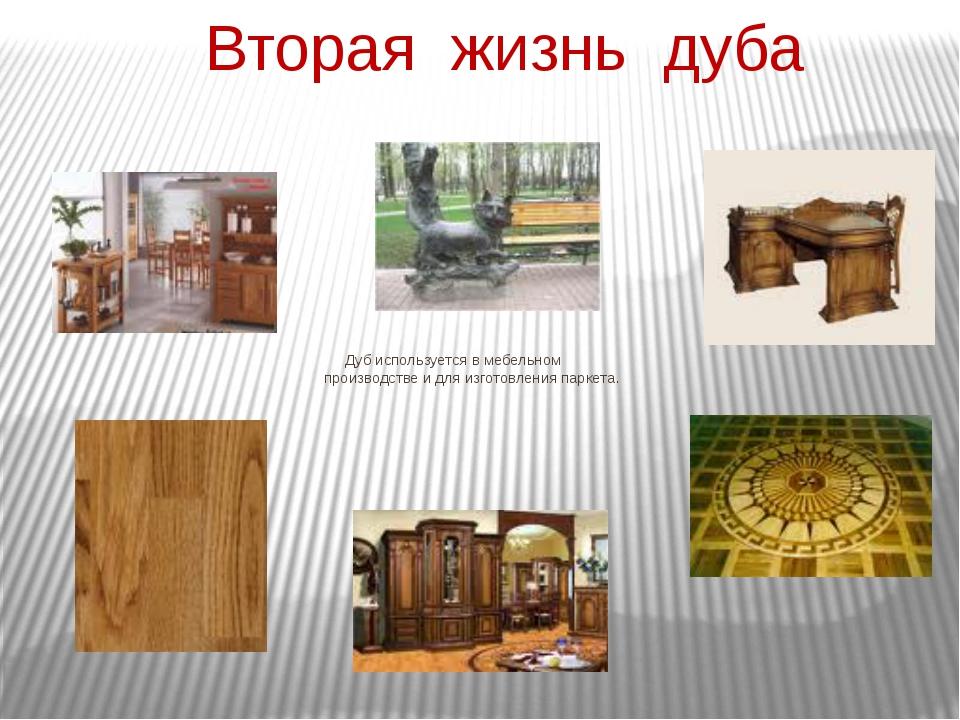 Вторая жизнь дуба Дуб используется в мебельном производстве и для изготовлени...