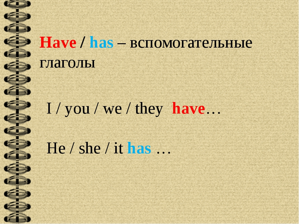 Have / has – вспомогательные глаголы I / you / we / they have… He / she / it...
