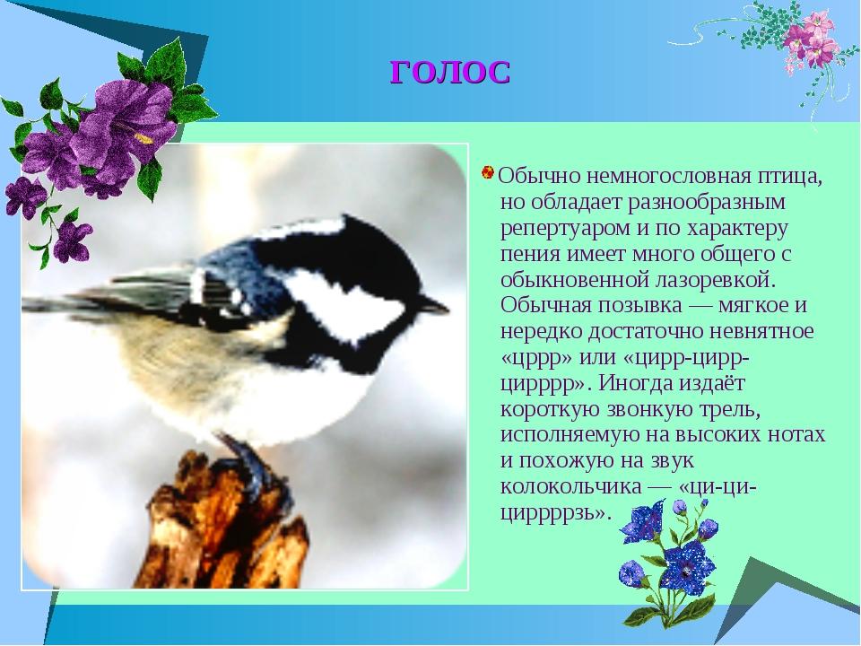 ГОЛОС Обычно немногословная птица, но обладает разнообразным репертуаром и по...