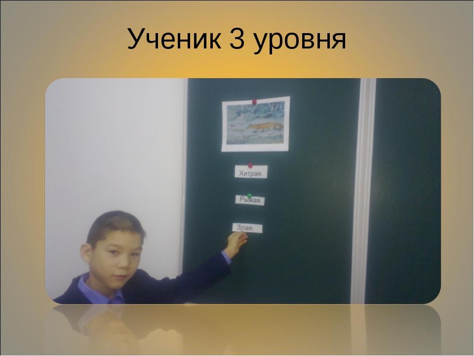 Ученик 3 уровня