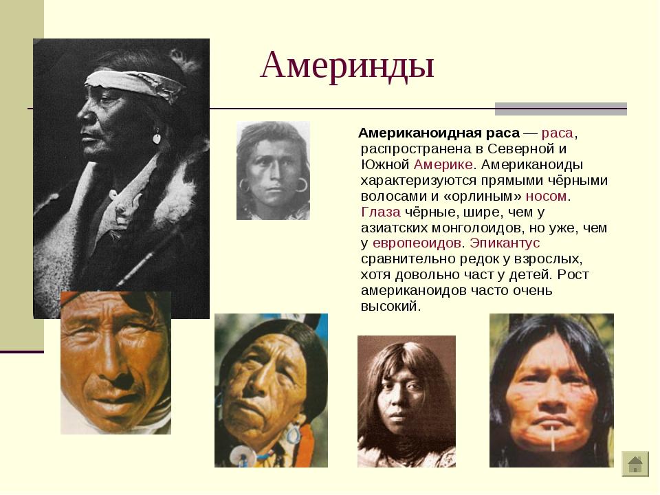 Америнды Американоидная раса — раса, распространена в Северной и Южной Америк...
