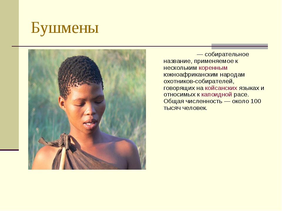 Бушмены Бушме́ны — собирательное название, применяемое к нескольким коренным...