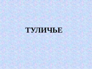 ТУЛИЧЬЕ